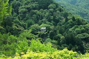 Erlend, Japan, Tempel