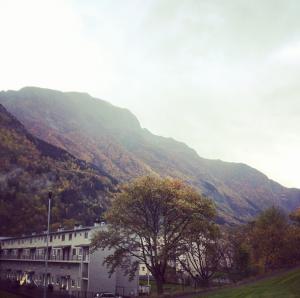 Skjermbilde 2014-10-12 kl. 11.03.57